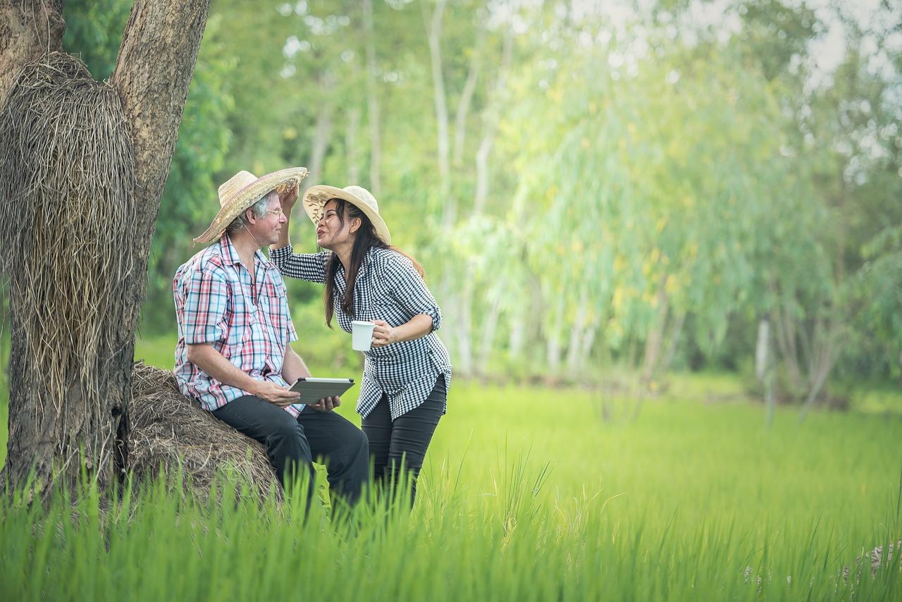 Planification de la retraite : tout ce que vous devez savoir